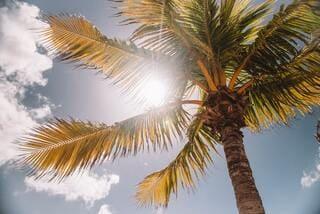 qual o melhor protetor solar
